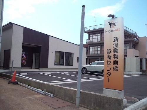 20120601-dan1.jpg