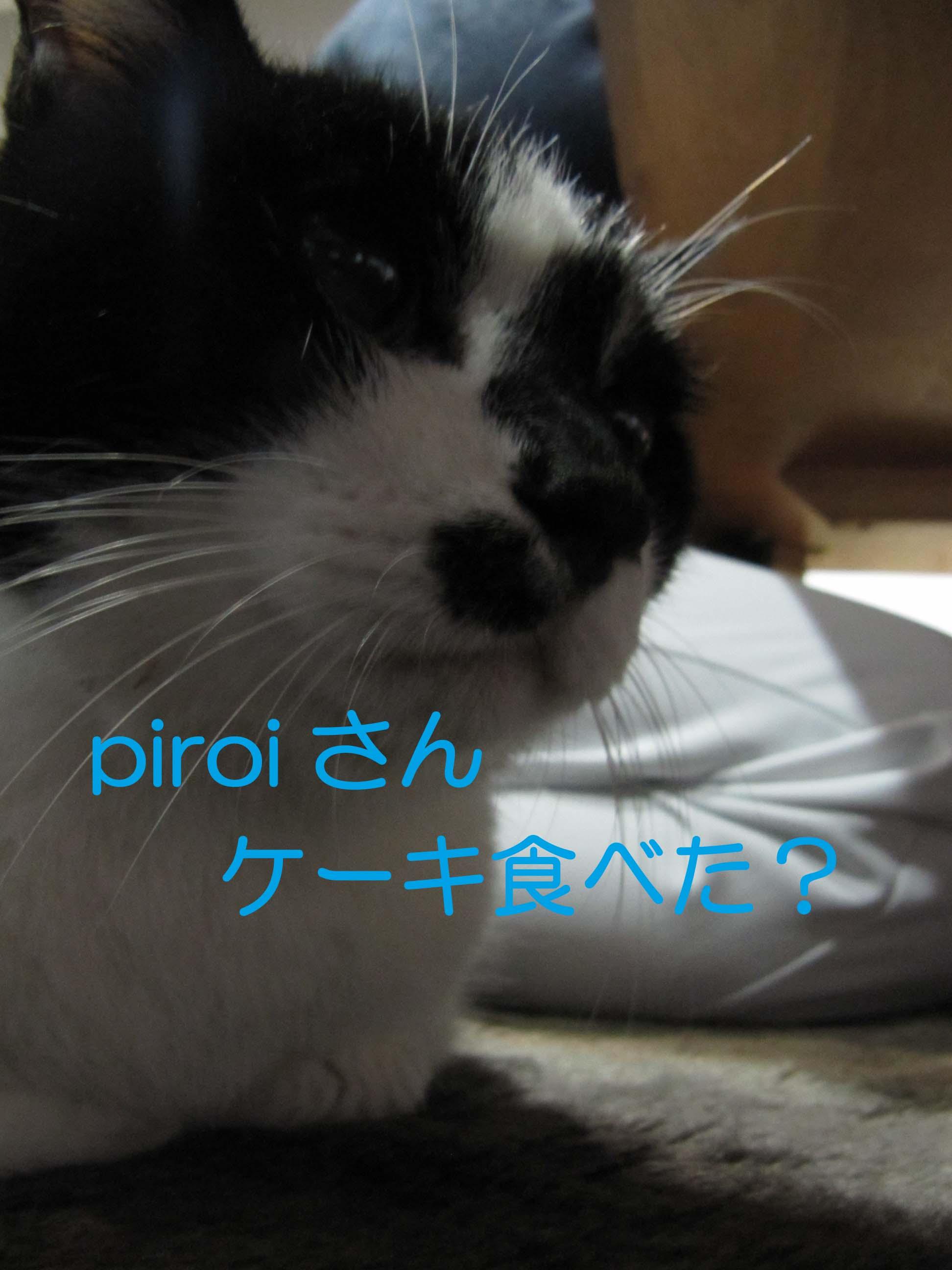 20101226-IMG_1433.jpg